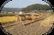 無農薬・天日干し米 にこまる 白米5kg