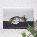 猫 障害者手帳カバー(東京都サイズ) 看板猫みるく イラスト A
