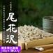 十割蕎麦「尾花沢」100g×7把(贈答用化粧箱入り)