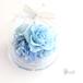 【ギフトラッピング・メッセージカード 無料】プリザーブドフラワー アレンジメント アップル ガラスドーム 青い薔薇 スカイブルー 水色 空色 ギフト オーダーメイド 母の日 父の日 誕生日 プレゼント おしゃれ かわいい【パルマ PALMA アリスブルー アップル ガラスドーム ギフト】
