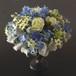 青の花8500円