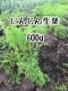 29年産※予約(2週間前後) 無農薬にんじん生葉600g