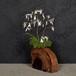 流木の花器、フラワーベース、8