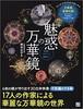 魅惑の万華鏡 (手作りを楽しむ) 単行本(ソフトカバー) – 2017/5/19 照木 公子 (著)