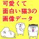 ラインスタンプの可愛くて面白い猫3の画像データを売ります。