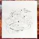 『ありがとう』[002/88] × サイハテ曼荼羅
