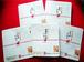 水引き 乾燥りんご 10袋セット(税込)