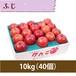 【りんご】ふじ 10kg(40個)