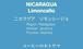 【ニカラグア】 リモンシージョ ☆浅煎り 200g