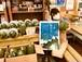 青空すいか(中玉)1個と夏野菜詰め合わせセット (6月1日より予約開始)
