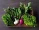 《毎週発送》FIO野菜 Lセット(ファミリー向け 大きめセット)