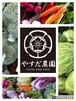 旬野菜セット『冬色』M80サイズ