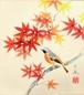 中谷文魚 色紙「紅葉」