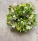 NEROLIDOLの植物教室キット≪ハーブや草花のテーブルリース≫