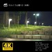 りんくう公園12(夜景)