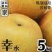 【送料無料】【宮城県産】家庭用 産地直送 ブランド和梨「幸水」5kg/箱