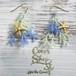 Coralreef motif Pierce -Ocean-