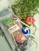 プチロリポップキャンディー(2本入り)