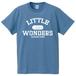 COLLEGE LOGO T-shirts (SAX)