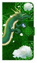 【鏡付き Mサイズ】  弁財天龍神 Divine Dragon of Benzaiten 手帳型スマホケース