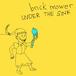 brick mower / under the sink cd