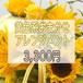 黄色系おまかせアレンジメント3,300円【受取り来店】及び【平戸市・平戸市近郊への配達限定】