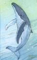 【ミニ原画】海の仲間たち⑳
