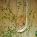 流木の掛け時計、縦横兼用-5