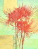 曼殊沙華VII(原画) -Spider Lily VII (Original)