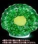 希少!結晶化した貝殻 黄色のクラヤン(管C2)