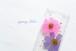 iPhone / andoroid 対応 押し花スマホケース「躑躅色と菖蒲色の秋桜(コスモス)」
