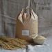 【ササニシキ玄米5kg】源流育ちお山のお米