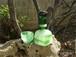 琉球ガラス 酒器 泡一筆角デカンタ&泡一筆ぐいのみセット 緑|琉球ガラス みんるー商店|