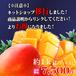 【期間限定販売中】贈答用 上司・先輩・恩師・お得意様へ沖縄糸満完熟マンゴー約1kg(2〜3玉)