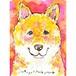 [6]ピンク柴犬