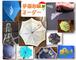 販売中止中☆【傘・オーダー制】手描き染め、私だけのかわいいお花の傘
