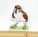 キメ顔のスズメ 鳥ワッペン