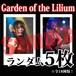 【チェキ・ランダム5枚】Garden of the Lilium