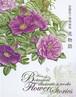安藤牧子植物画集 花物語