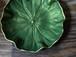 木製デザイン皿 蓮の葉
