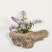 流木の花器、フラワーベース、7