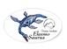 エラスモサウルスステッカー L 2枚セット