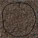 [絵画|Artworks] circle | 17-80