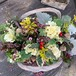 ④【クリスマス&お正月】葉牡丹ミニ籠寄せ植え