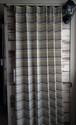 マルチボーダー ネオンカラー カーテン  Primus プリムス 103518 BR/YE