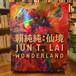 頼純純:仙境 WONDERLAND / JUN T .LAI