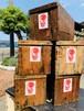 RINGO STAR PROJECT  木製リンゴ箱