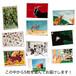 【雑貨】ひらいじんた画 ポストカード ランダム5枚セット