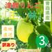 【令和元年度産発売中】青森県津軽産りんご【王林】訳あり3Kg/箱【送料無料】