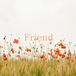 「Friend」